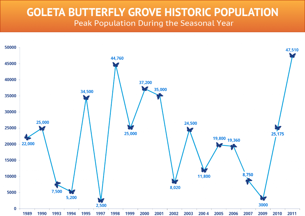 Monarch butterfly peak population during seasonal year